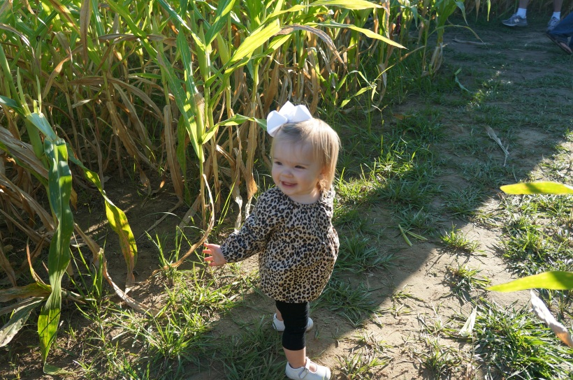audrey smiling in maze